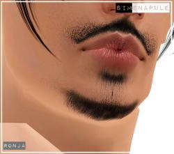 beard10_22