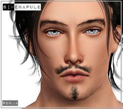 beard093