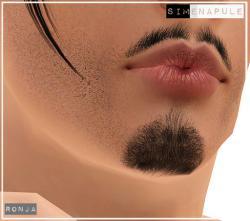 beard11_22